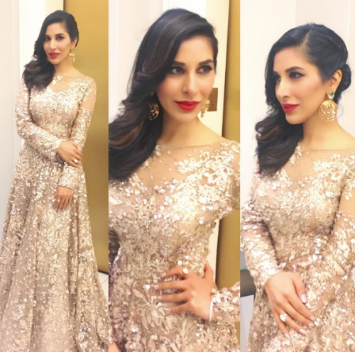 7 wedding hairstyle ideas - Sophie Choudry