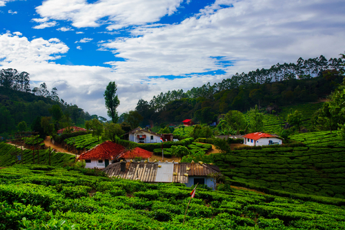 1. film inspired holiday destinations - kerala