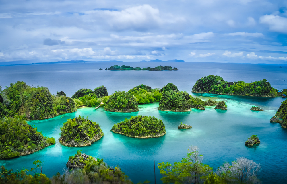 Pianemo Islands  Blue Lagoon with Green Rockes  Raja Ampat  West Papua. Indonesia