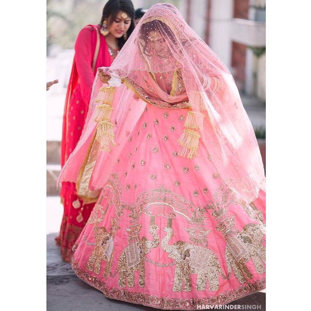 candy colour lehenga 1
