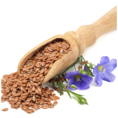 flax-seeds-benefit-and-side-effects