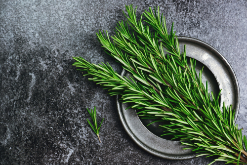 rosemary-on-a-plate