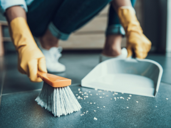 house-work-moping