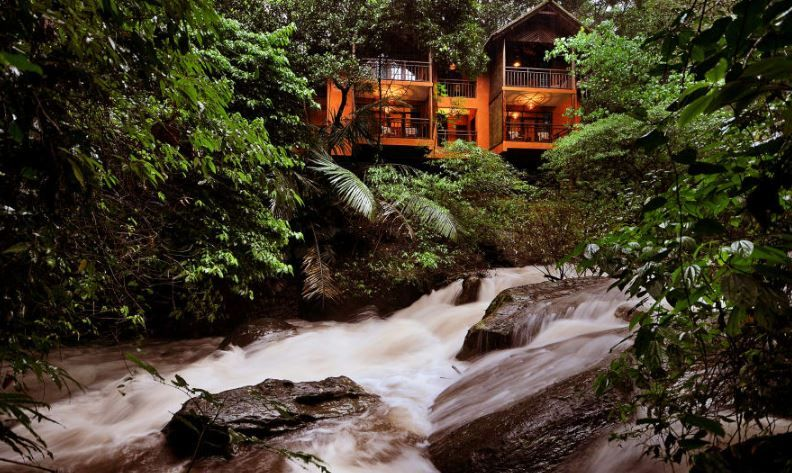 4 Getaways That Are Perfect For Your Long Weekends - jungle retreat  wayanad