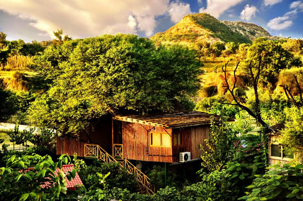 5 Getaways That Are Perfect For Your Long Weekends - the tree house  jaipur