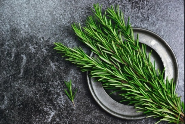 1-rosemary-oil-health-and-beauty-benefits