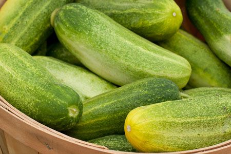 cucumber-benefits-and-side-effects005