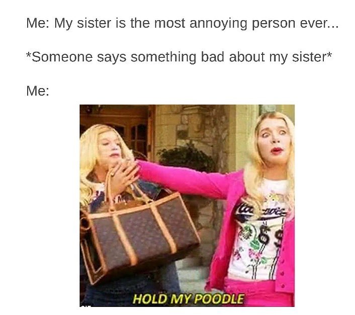 8 Memes To Share With Your Protective Elder Sister Who's More Like Your Second Mom