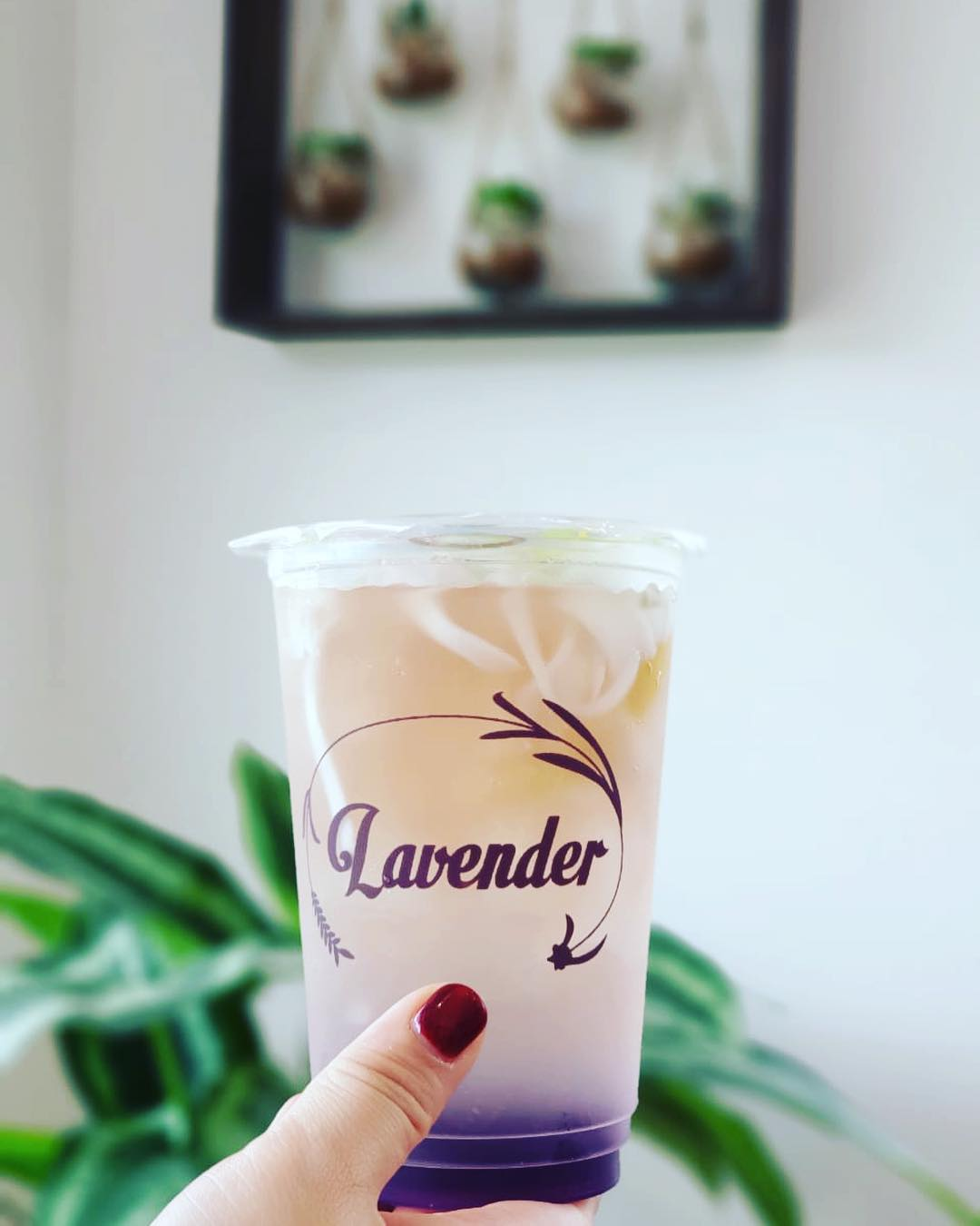 12. summer detox drinks  - Go Classy With The Lady Lavender%E2%80%99s Mocktail