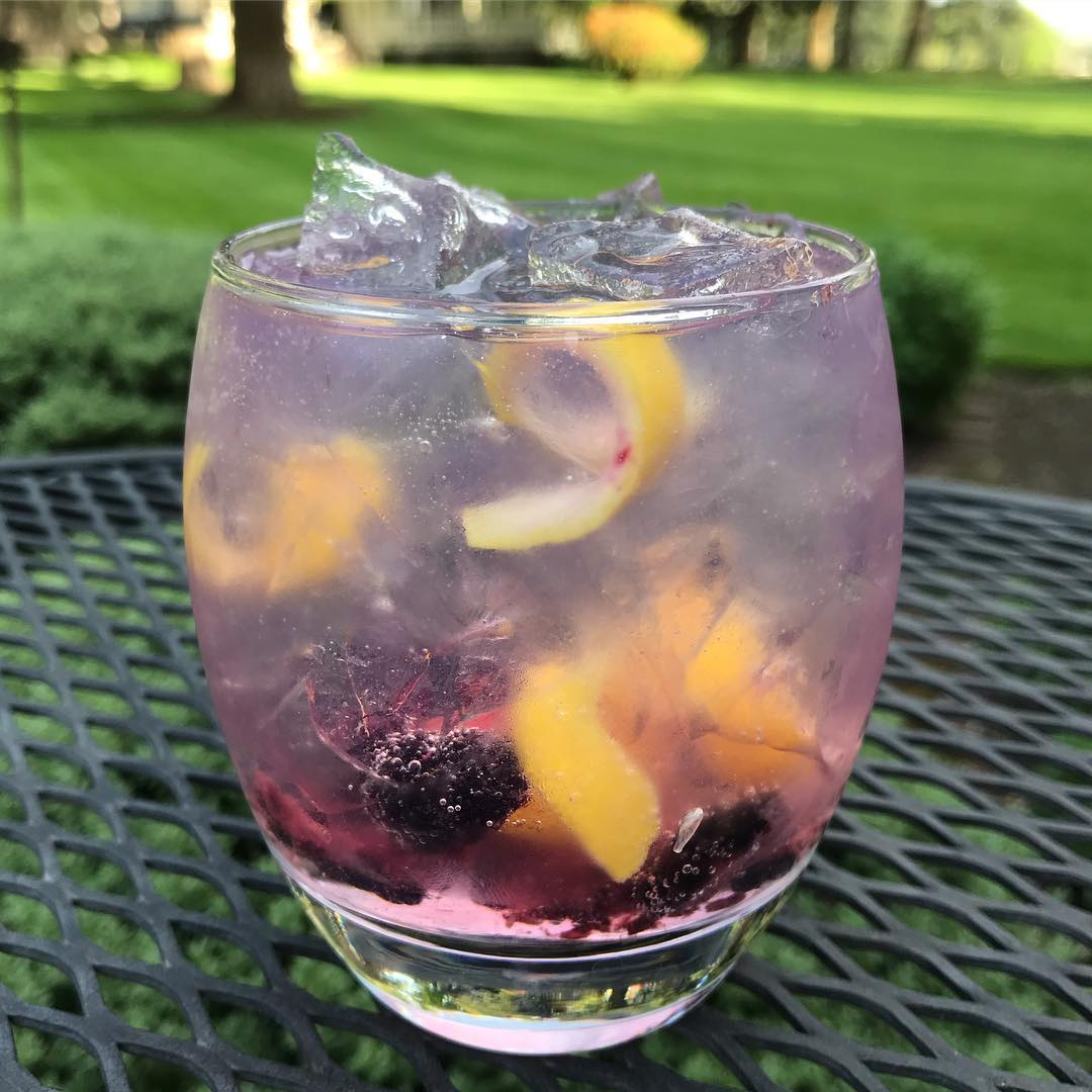 a-glass-of-blackberry-and-lemon-mixed-detox-juice