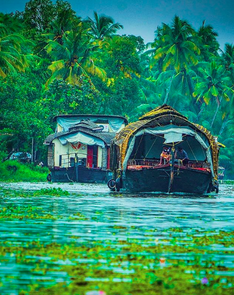 kerala-things-to-do-monsoons-rainy-season2