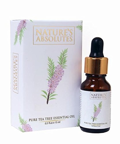 natures-absolutes-pure-tea-tree-oil Best hair Oils In Telugu