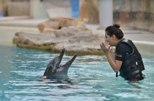 3 trip with besties - woman playing with dolphin sentosa island