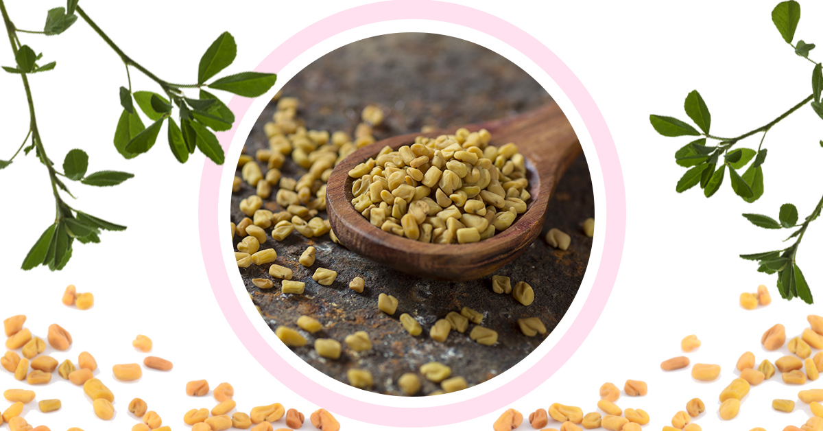 Fenugreek Goodness: Here's Why These Seeds Are Amazing For Your Face, Skin And Hair!