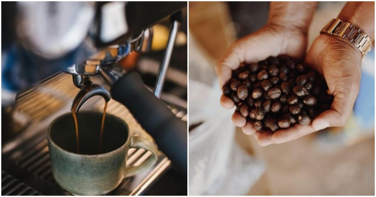 From French Press To Filter Coffee: Here Are Bengaluru's Best Coffee Roasters!