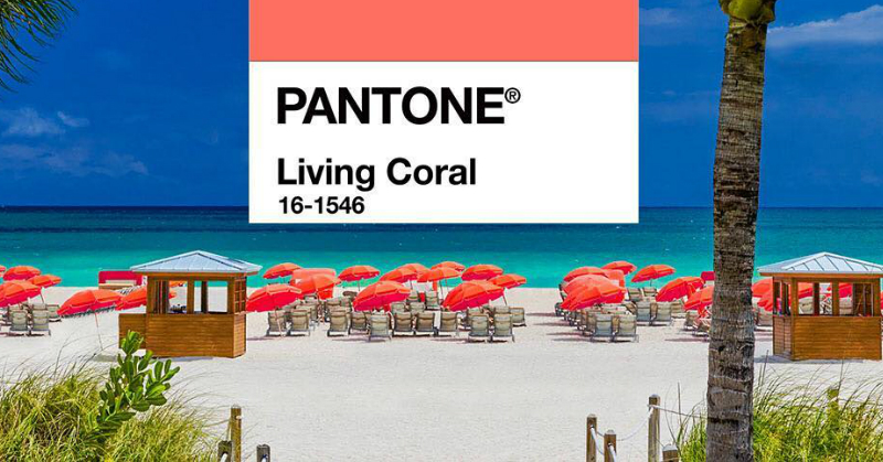 BREAKING NEWS: The Pantone Colour Of The Year 2019 Is What We Are 'Living' For!