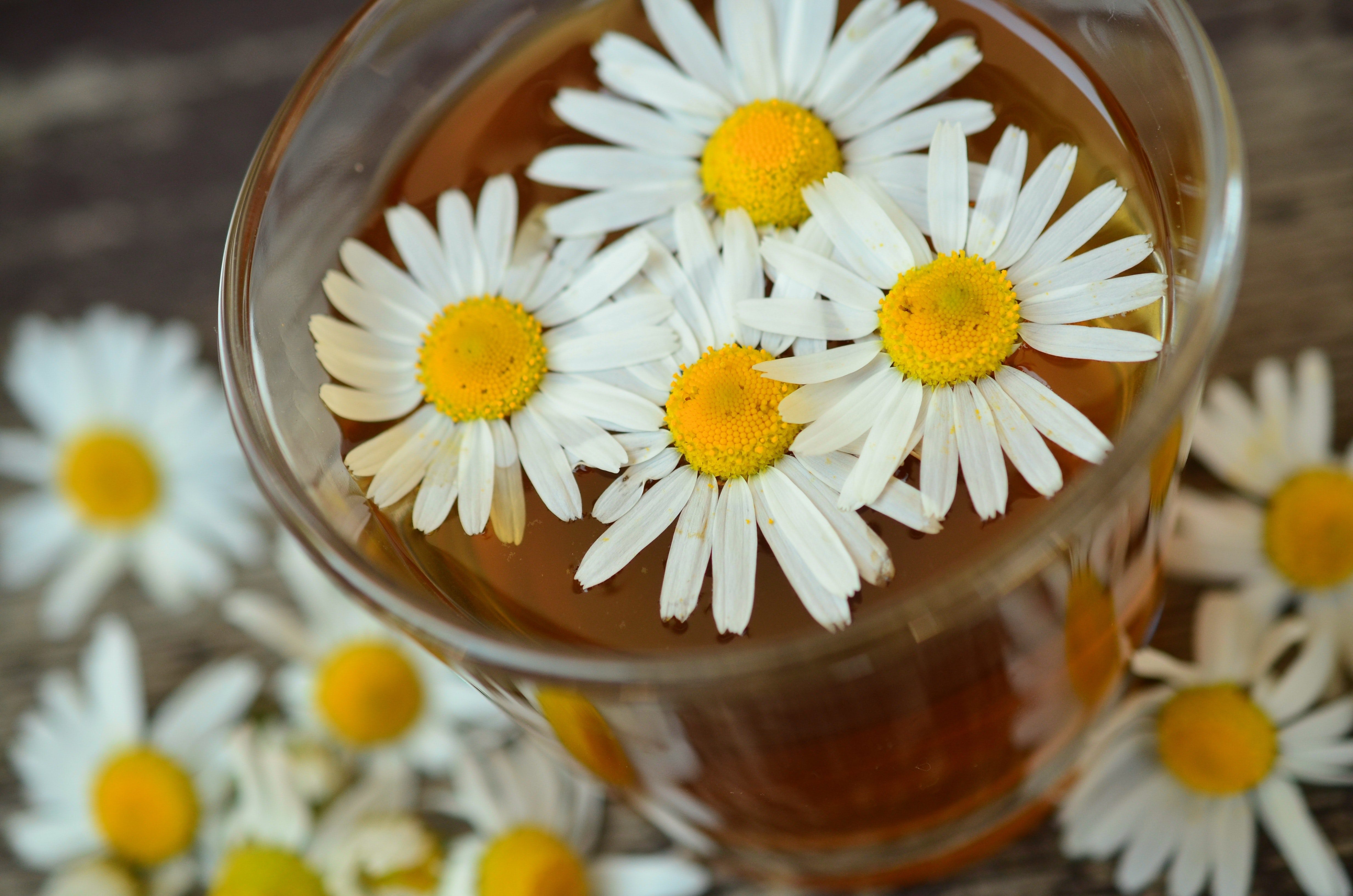 Chamomile Tea Can Silently Help You With Your New Year Weight Loss Resolutions