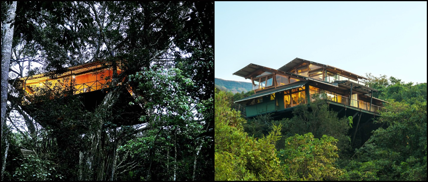 5 Tree House Resorts In India That You Must Visit To Be As Close To Nature As Possible!