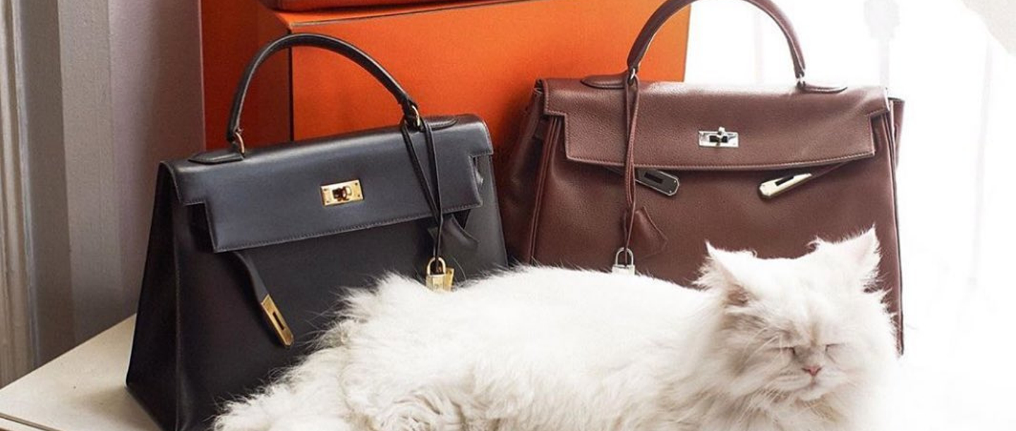 How To Buy A Birkin: The All-You-Need-To-Know Guide To Snag The Bag!