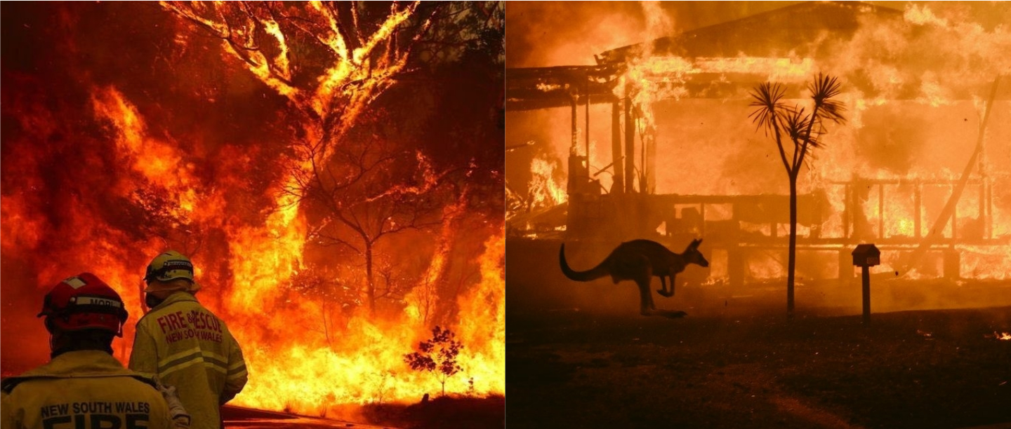 #PrayForAustralia: Terrifying Images That Show The Damage Caused By Bushfires
