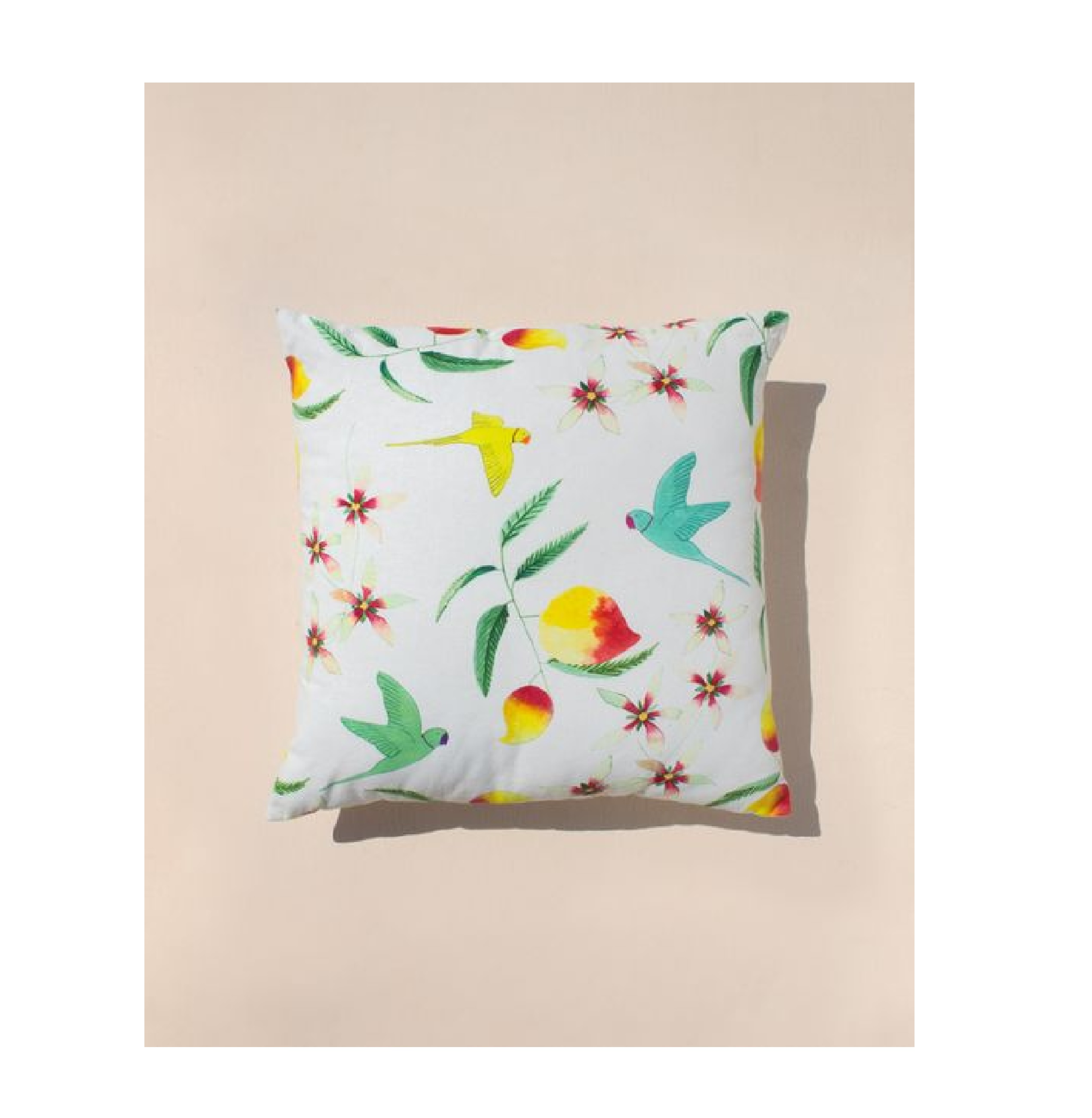 Aamras Cushion in White
