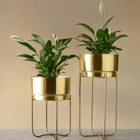 Champagne Gold Indoor Metal Planters