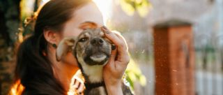 Planning To Bring Home A Pet?  Ask Yourself These 7 Important Questions First
