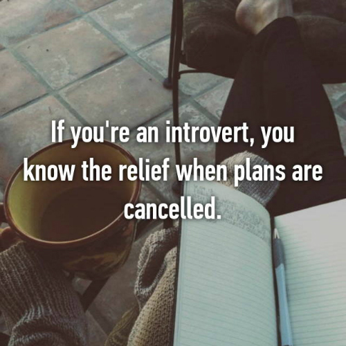 6 things every introvert will relate to