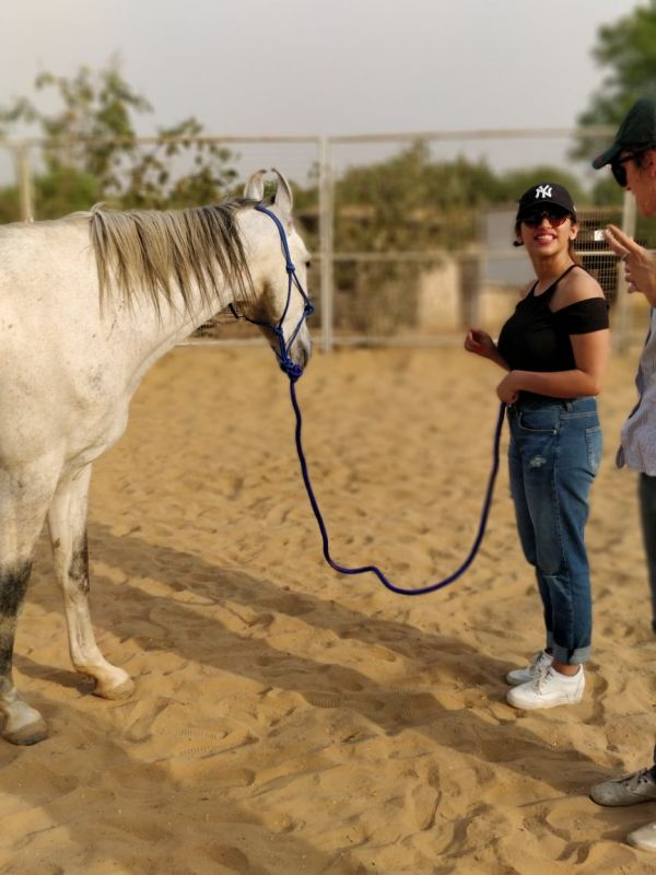 3 natural horsemanship