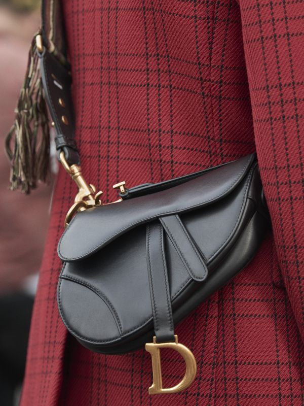 DIOR SADDLE BAG AUTUMN-WINTER 2018-2019 %281%29
