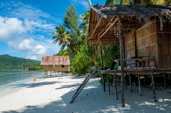 Nipa bamboo Huts at the White Sand beach with palm trees in Raja Ampat  Papua New Guinea  Indonesia