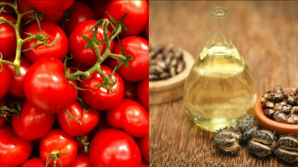 12-indian-secrets-castor-oil-and-tomato-mask
