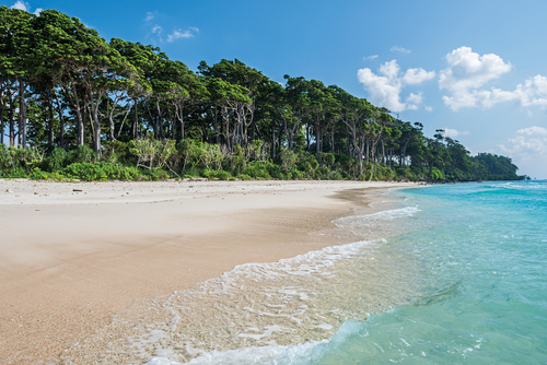 honeymoon destinations in india - andaman