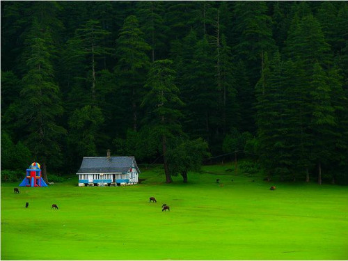 honeymoon destinations in india - khajjiar