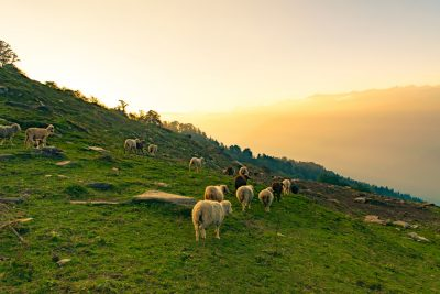 23-weekend-getaways-near-delhi-malana