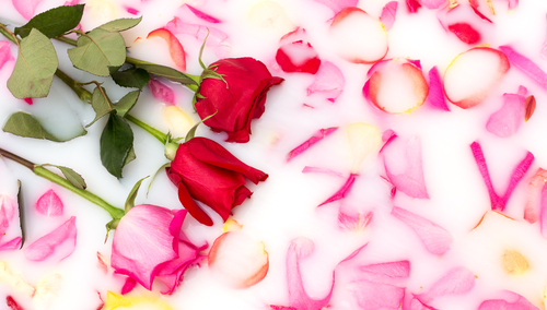 7 homemade face packs rose and milk