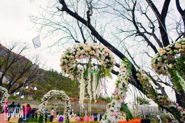 8 destination wedding wisterias decor