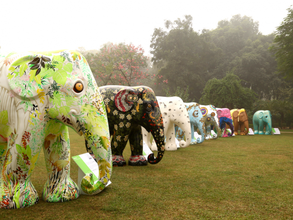 1 internal - elephant parade india
