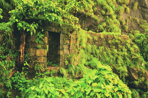 5 forts around mumbai - karnala fort