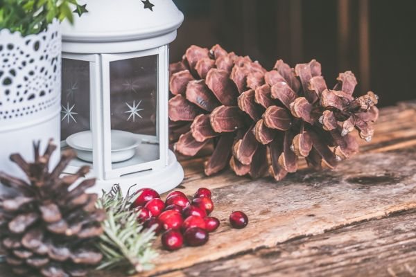 1 christmas decor ideas
