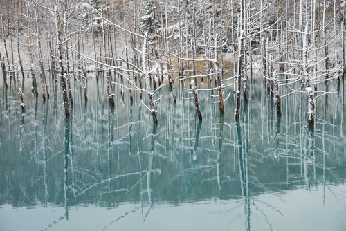 2 frozen lakes - bright blue pond hakkaido japan