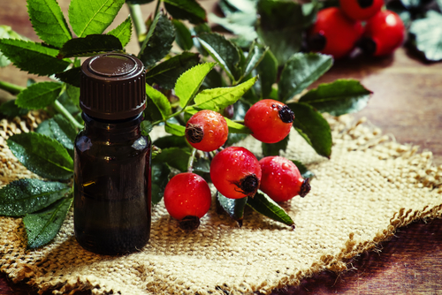 rosehip oil  rosehip seed oil  benefits  skin  hair  acne  scars internal rosehip seed oil bottle