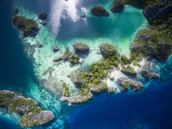 The beautiful islands and colors around Fam Island  Raja Ampats  West Papua  Indonesia