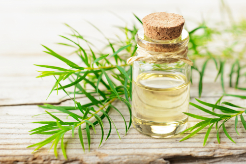 Tea tree for butt acne home remedy