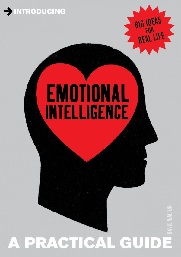 35 valentine's day gift for boyfriend - Introducing Emotional Intelligence A Practical Guide