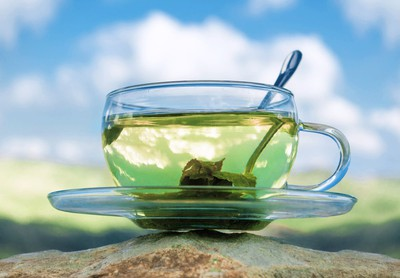 The Magic Drink - All You Need To Know About Green Tea   Its Benefits  for marathi