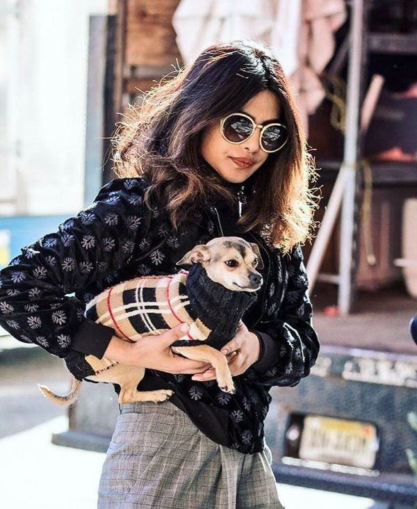 6-priyanka-chopra-dog-diana-in-cute-outfit