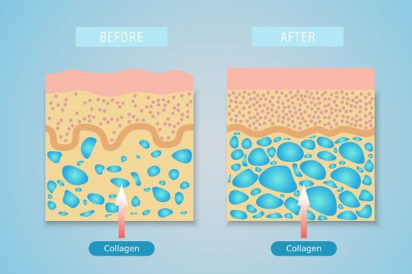 8 beauty industry buzz words and industry terms - collagen