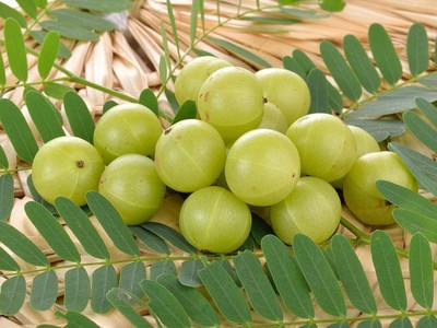 4-indian-secrets-amla