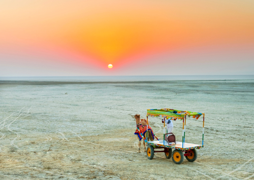 trave -guide-ahmedabad-bengaluru-little-rann-of-kutch